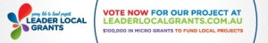 Leader-Local-Grants-Vote-Now-Button
